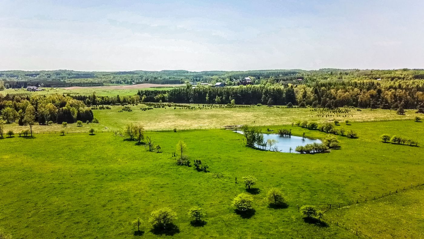 Willoughby Farm Caledon Country Homes Luxury Real Estate
