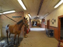 Stables Interior - Country homes for sale and luxury real estate including horse farms and property in the Caledon and King City areas near Toronto