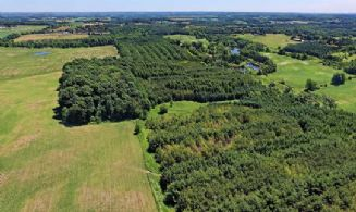 48.5 Acres, Schomberg, King  - Country homes for sale and luxury real estate including horse farms and property in the Caledon and King City areas near Toronto