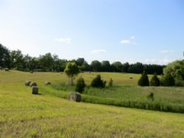 Front Field - Country homes for sale and luxury real estate including horse farms and property in the Caledon and King City areas near Toronto
