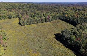 50 Acres, Forks of The Credit, Caledon, Ontario, Canada - Country homes for sale and luxury real estate including horse farms and property in the Caledon and King City areas near Toronto