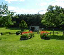 Spring Flowers - Country homes for sale and luxury real estate including horse farms and property in the Caledon and King City areas near Toronto