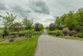 Schomberg Equestrian Estate - Country Homes for sale and Luxury Real Estate in Caledon and King City including Horse Farms and Property for sale near Toronto