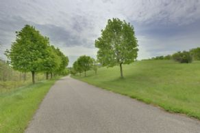1 Km Paved Tree-lined Driveway - Country homes for sale and luxury real estate including horse farms and property in the Caledon and King City areas near Toronto