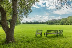 Grass Riding Ring - Country homes for sale and luxury real estate including horse farms and property in the Caledon and King City areas near Toronto