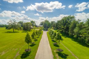 Long Paved Drive - Country homes for sale and luxury real estate including horse farms and property in the Caledon and King City areas near Toronto