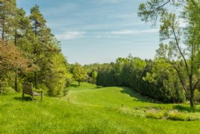Views to the South - Country homes for sale and luxury real estate including horse farms and property in the Caledon and King City areas near Toronto