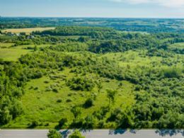 10 Acre Lot, Caledon - Country Homes for sale and Luxury Real Estate in Caledon and King City including Horse Farms and Property for sale near Toronto