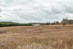 7 Acre Building Lot, Erin, Ontario - Country homes for sale and luxury real estate including horse farms and property in the Caledon and King City areas near Toronto