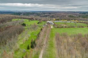 Long Tree-lined Driveway - Country homes for sale and luxury real estate including horse farms and property in the Caledon and King City areas near Toronto