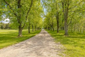 Front Driveway - Country homes for sale and luxury real estate including horse farms and property in the Caledon and King City areas near Toronto
